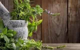 Как проводится лечение седалищного нерва быстро народными средствами в домашних условиях