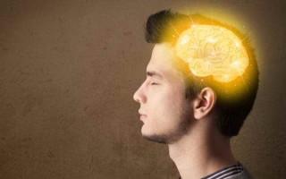 Эффективные народные средства для улучшения мозгового кровообращения