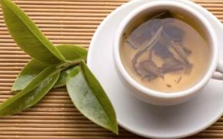 Лечение лавровым листом остеохондроза: особенности применения и рецепты