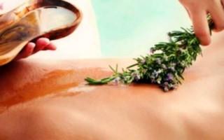 Травы при остеохондрозе: действие и применение лекарств