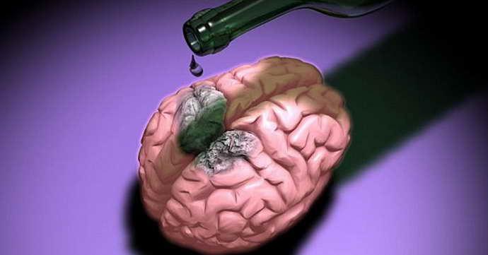 Особенности воздействия алкоголя на мозг