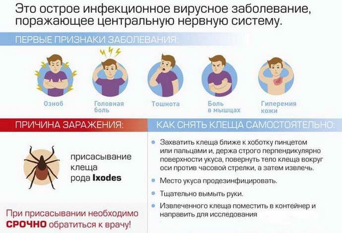 причины клещевого энцефалита
