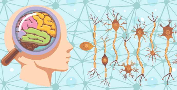 Ремитирующее течение рассеянного склероза