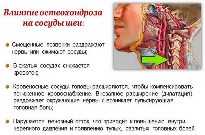 Расшифровка результатов сосудов головы и шеи