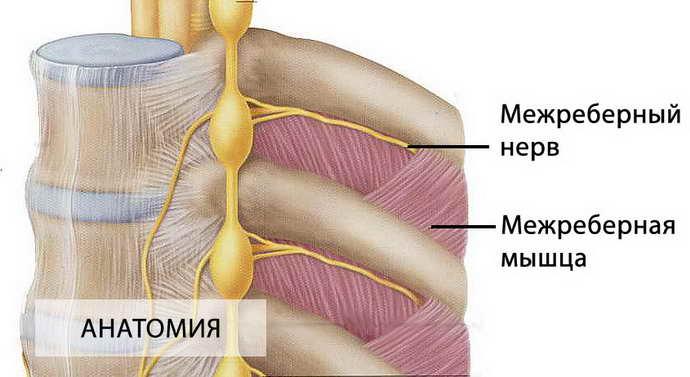 боль в грудине при остеохондрозе как начинается