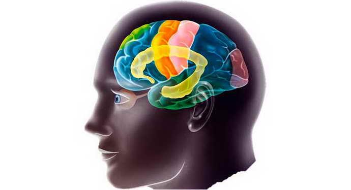 ирритация коры головного мозга что это такое
