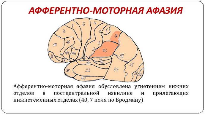 микрополяризация головного мозга показания