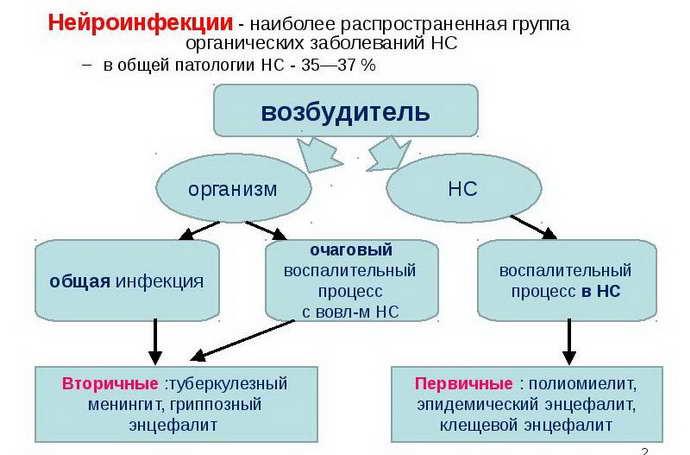 нейроинфекции классификация