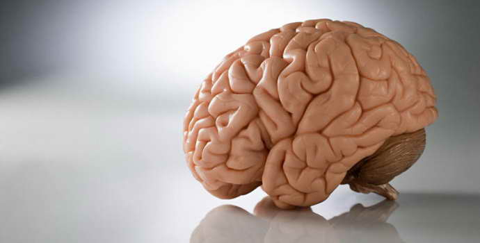 Распознать преходящее нарушение мозгового кровообращения по первым симптомам