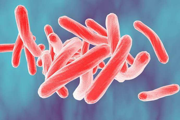 туберкулезный менингит причины