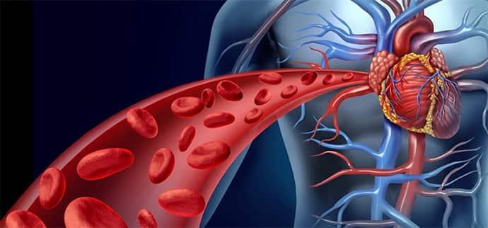кровообращение при судорогах в руках