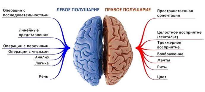 инсульт геморрагический левая сторона