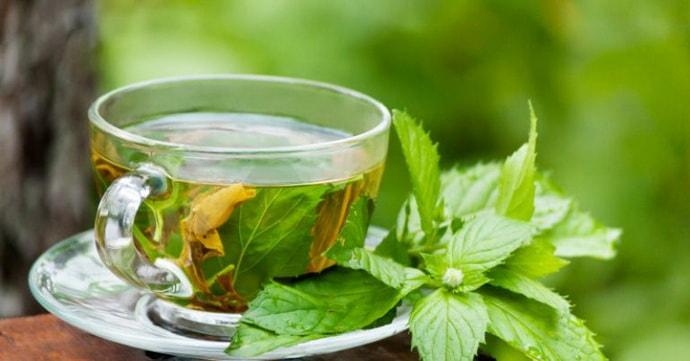 Мятный чай при заикании