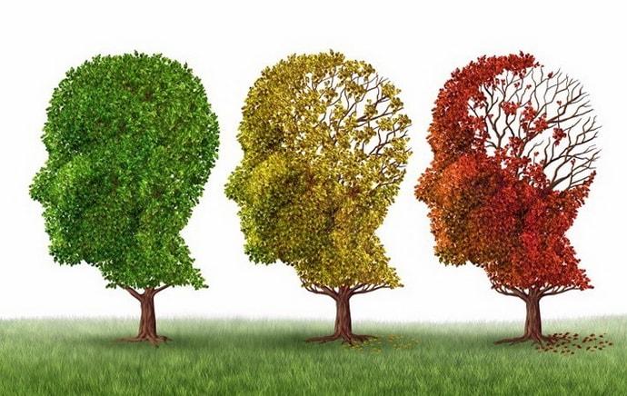 когнитивные нарушения причины заболевания