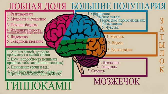 что такое кратковременная потеря памяти