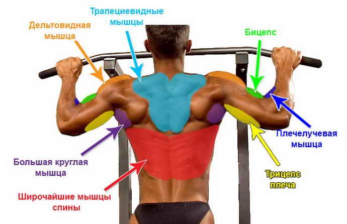 Нужно ли вытягивать позвоночный столб при остеохондрозе