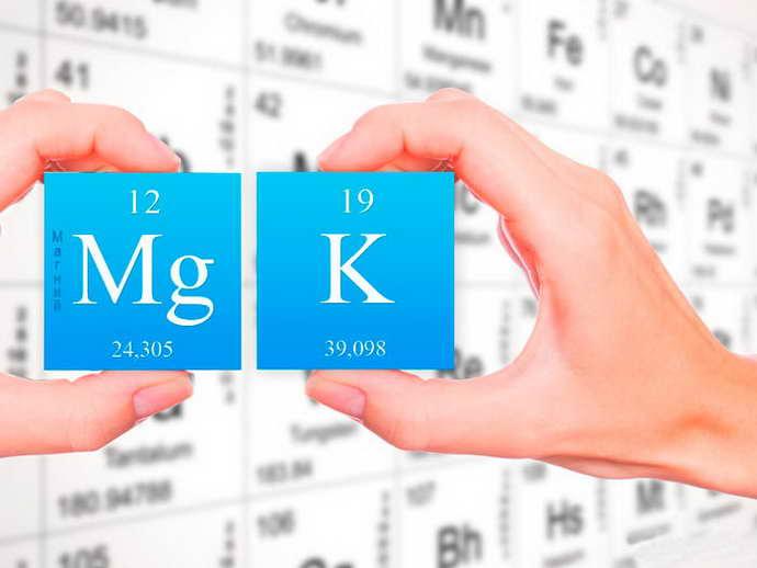 Роль калия и магния в организме