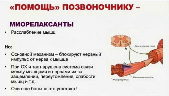 Препараты против остеохондроза