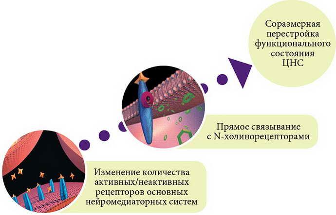 Седативные средства от эпилепсии